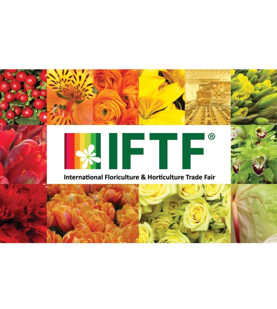 IFTF 2019