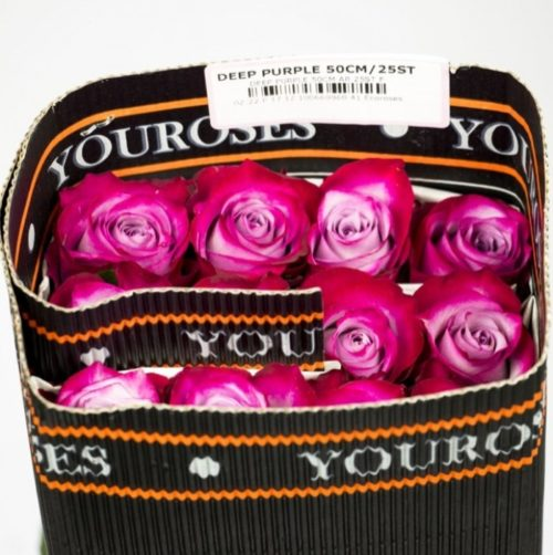 You Roses Deep Purple Packing