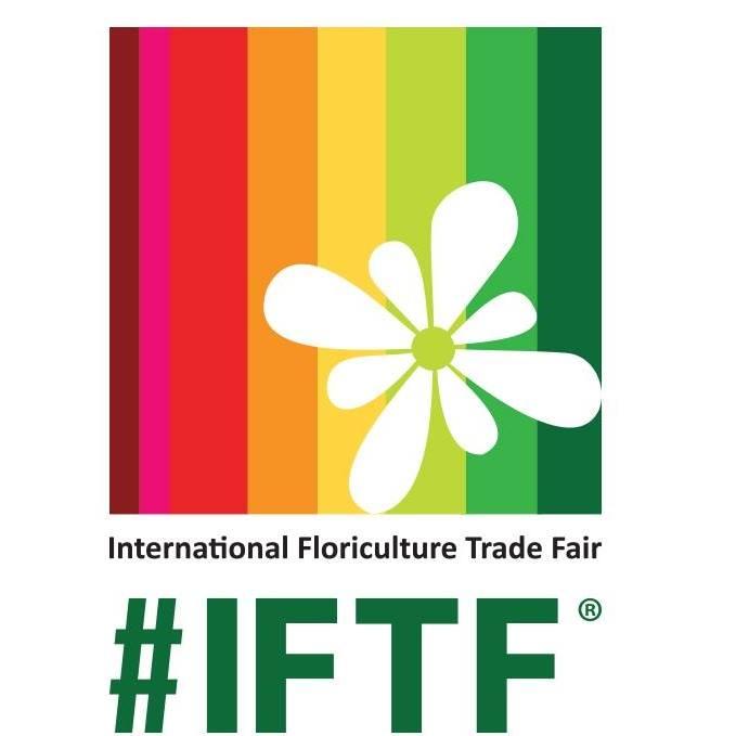 IFTF 2017