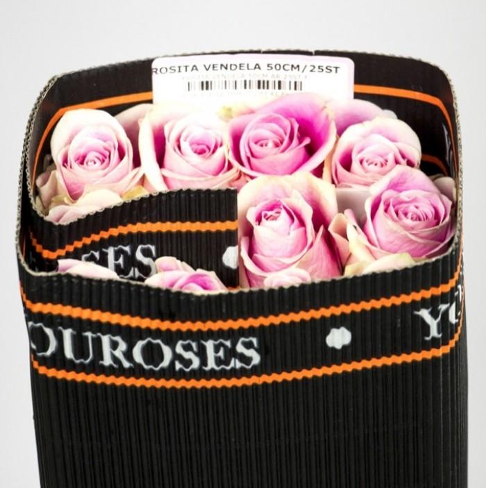 You Roses Rosita Packing