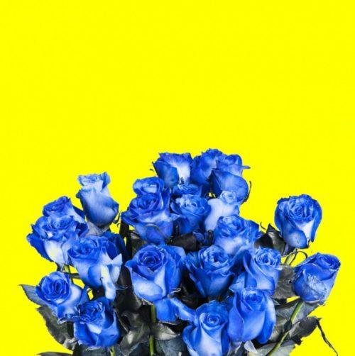 Blue Mondial