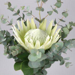 White King Wedding Bouquet
