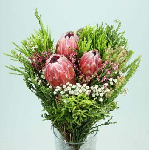 Bouquet 3 Protea