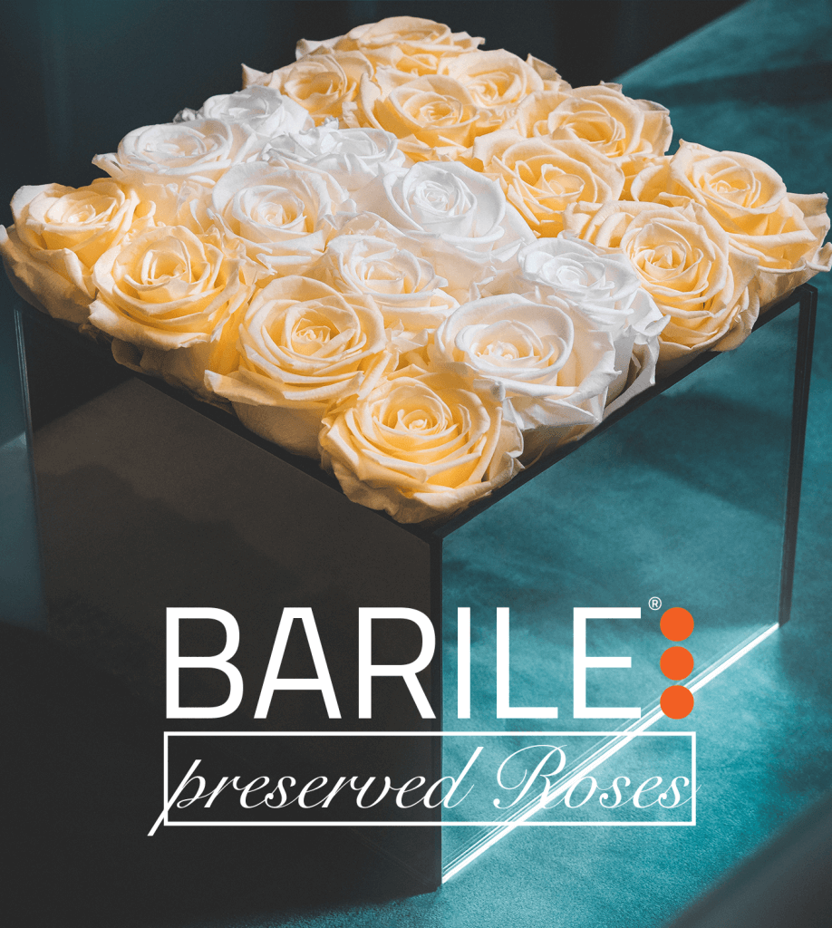 WELCOME BARILE PRESERVED ROSES