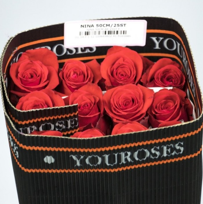 You Roses Nina Packing